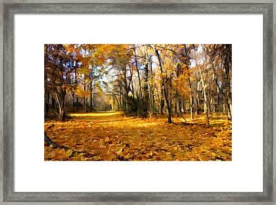Yellow Leaf Road Framed Print