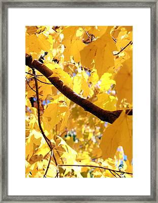 Yellow Leaves Framed Print by Valentino Visentini