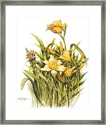 Framed Print featuring the painting Yellow Lily by Bob  George