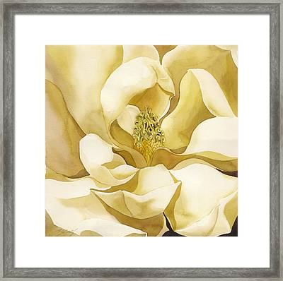 Yellow Magnolia Framed Print by Alfred Ng