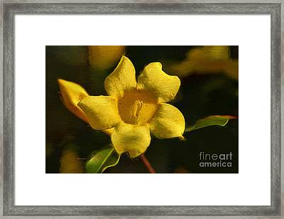 Yellow On The Wildside Framed Print