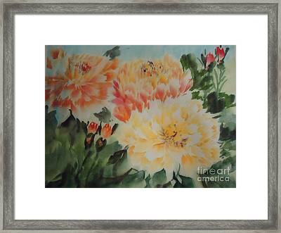 Yellow Peony Framed Print by Dongling Sun