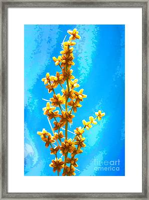 Framed Print featuring the photograph Yellow Plant by Yew Kwang