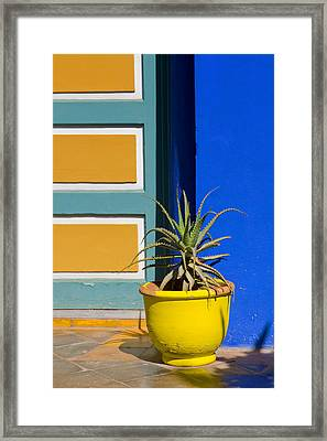 Yellow Pot  Framed Print by Mick House