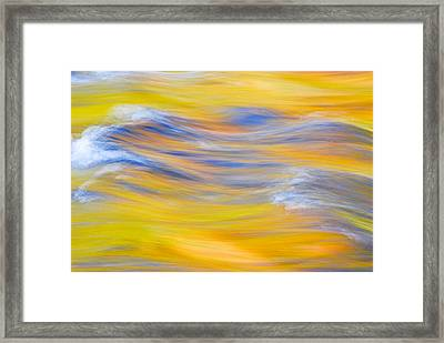 Yellow Reflection Framed Print by Michael Hubley