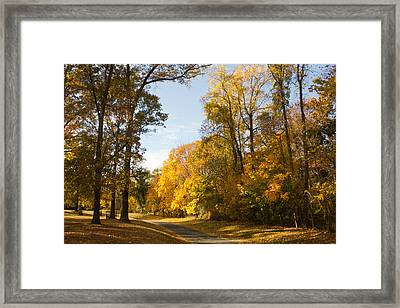 Yellow Road Framed Print