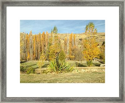 Yellow Framed Print by Ron Torborg