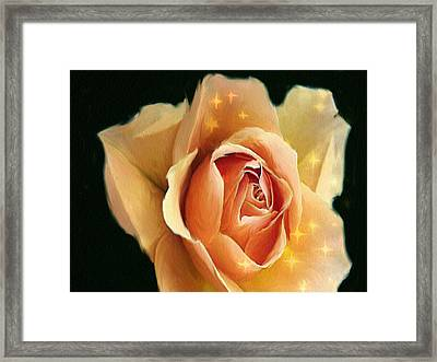 Yellow Rose Highlighted Framed Print