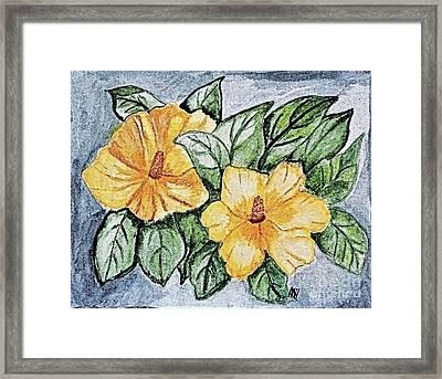 Yellow Rose Of Sharon Painting Framed Print