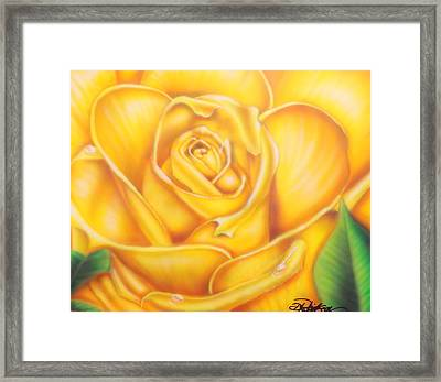 Yellow Rose Of Texas Framed Print by Darren Robinson