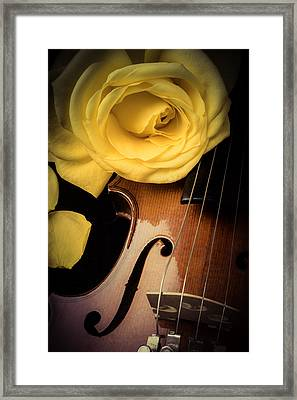Yellow Rose On Violin Framed Print by Garry Gay