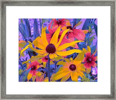Fantasy Garden - Rudbeckia Framed Print by Douglas MooreZart