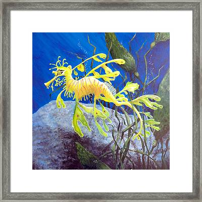 Yellow Seadragon Framed Print by Mary Palmer