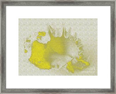 Yellow Shell Framed Print by Carol Lynch