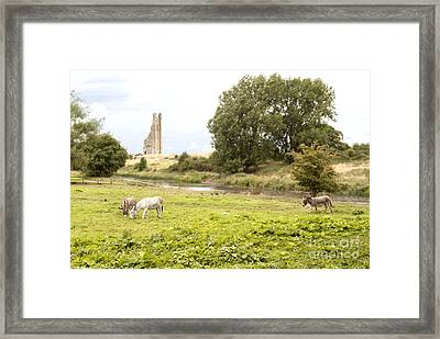 Yellow Steeple Amidst Meath Ireland Framed Print