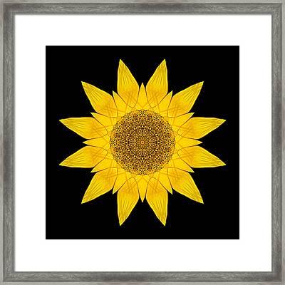 Yellow Sunflower X Flower Mandala Framed Print
