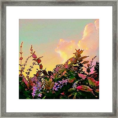 Yellow Sunrise With Flowers - Square Framed Print