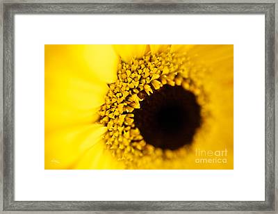 Yellow Framed Print by T Lang