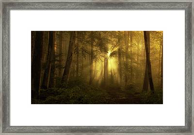 Yellow - The Bigger Picture Framed Print