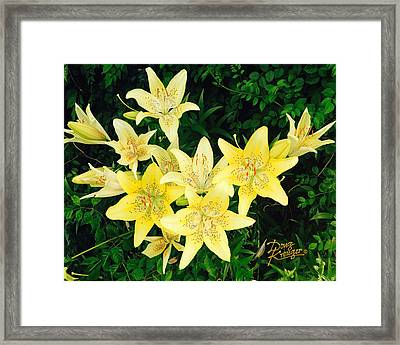 Framed Print featuring the photograph Yellow Tiger Lilies by Doug Kreuger