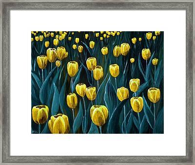 Yellow Tulip Field Framed Print by Anastasiya Malakhova