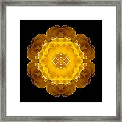 Yellow Tulip II Flower Mandala Framed Print