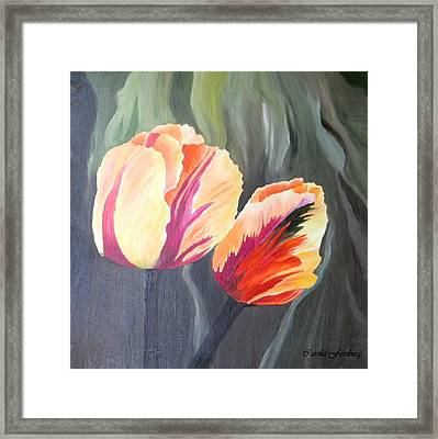 Yellow Tulips Framed Print by Carola Ann-Margret Forsberg
