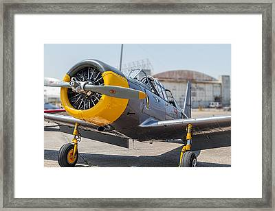 Yellow Valiant Framed Print by Tim Stanley