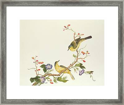 Yellow Wagtail With Blue Head Framed Print by Chinese School