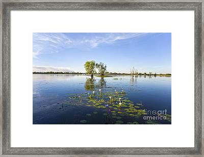 Yellow Water Billabong Kakadu Australia Framed Print