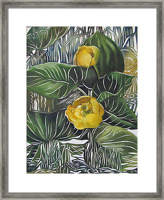 Yellow Waterlilies Framed Print by Alfred Ng