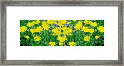 Yellow Wild Flowers Framed Print