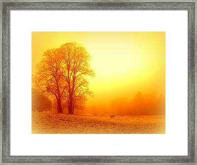 Yellow Winter Sunrise Framed Print by The Creative Minds Art and Photography