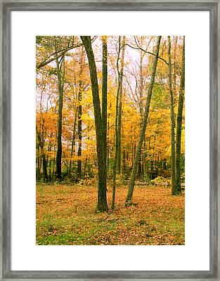 Yellow Wood Vertical Framed Print