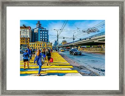Yellow Zebra Framed Print