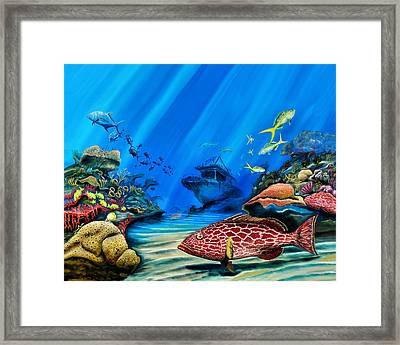 Yellowfin Grouper Wreck Framed Print