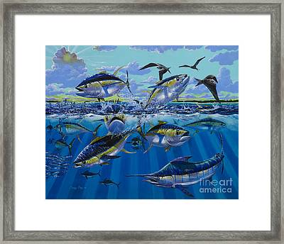 Yellowfin Run Off002 Framed Print by Carey Chen