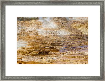 Yellowstone Gold Framed Print