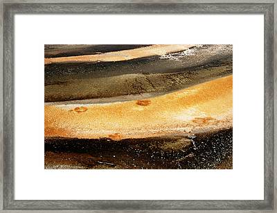 Framed Print featuring the photograph Yellowstone 1 by Geraldine Alexander