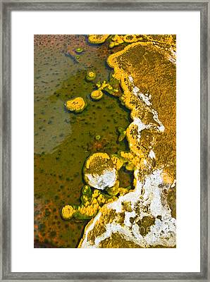 Yellowstone Abstract Framed Print by Jamie Pham