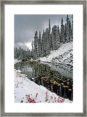 Yellowstone Early Snow Framed Print by Geraldine Alexander