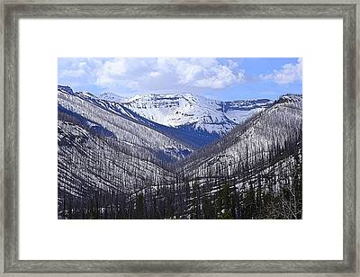Framed Print featuring the photograph Yellowstone East Entrance Spring by Nadalyn Larsen