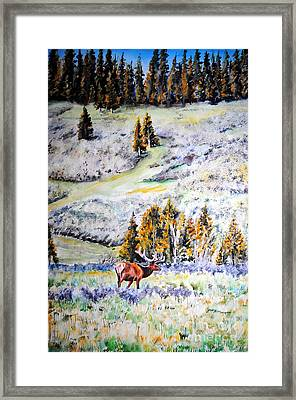 Yellowstone Elk Framed Print by Tracy Rose Moyers