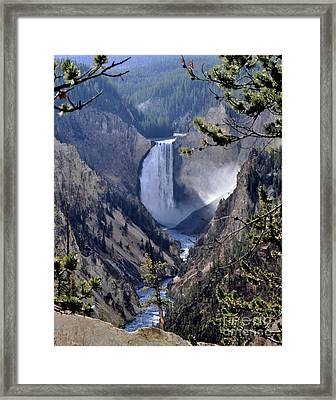 Yellowstone Lower Falls Framed Print by Kathleen Struckle