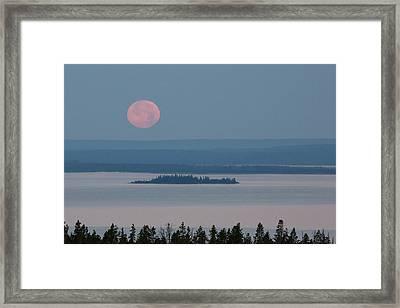 Yellowstone Moonset Framed Print by Sandy Sisti