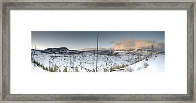 Yellowstone Morning Framed Print by David Yack