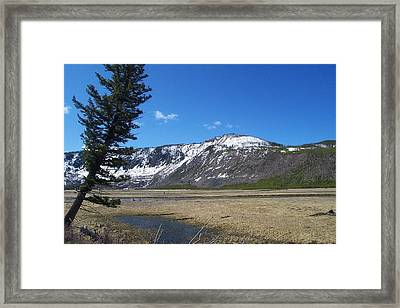 Yellowstone Park Beauty 1 Framed Print