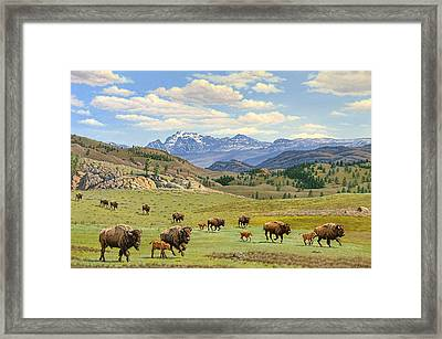Yellowstone Spring Framed Print