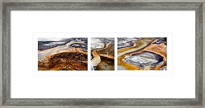 Yellowstone Triptych Framed Print by Geraldine Alexander