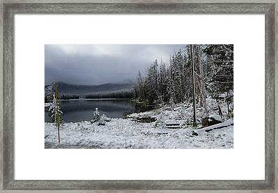 Yellowstone Winter Framed Print by Diane Mitchell